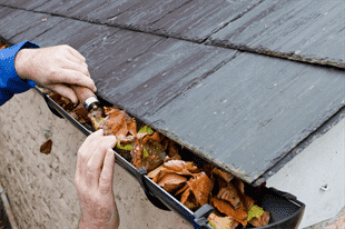 Why Cleaning Gutters and Downspouts Is a Crucial Part of Home Maintenance