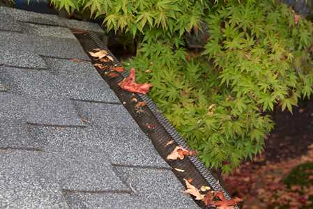 Gutter cleaning can serve as the only solution