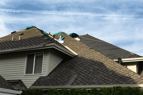 The Importance of Green Roof Shingles for Your Homes