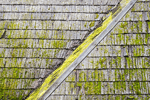 How to Avoid Algae from Stone Roof Shingles